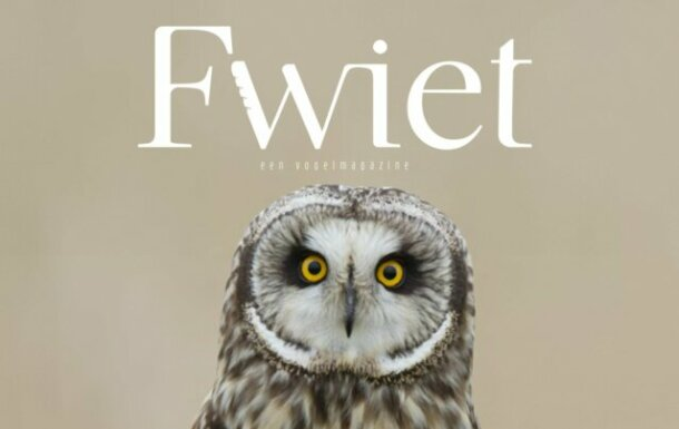 fwiet-magazine-birdwatchers-aspect-ratio-640-403